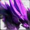 Phase master icon