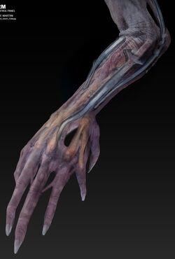 AOE Creator arm concept