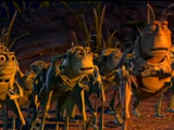 Grasshoppers (A Bug's Life)