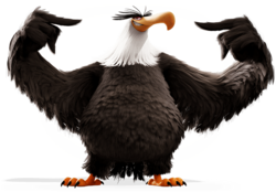 ABMovie Mighty Eagle Cocky