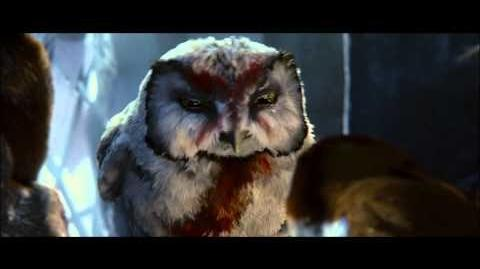 Legend of the Guardians - The Owls of Ga Hoole Trailer 3