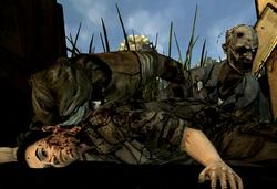 Shawn's Death