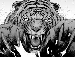 Shiva the Tiger