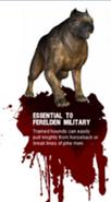 Dog's Blurb