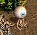 Глаз мага - H3