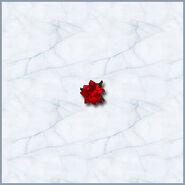 Роза (MM VI)