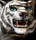 Белый тигр иконка H7
