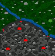 Лесные тени - карта (поверхность)
