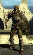 Воин-DM-некроманты