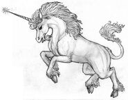 Единорог зарисовка герои 5 НМК