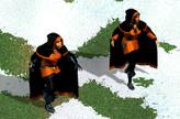Воры в бою (HoMM IV)