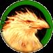 Феникс - HoMM IV - иконка