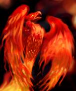 Феникс - H3 - арт