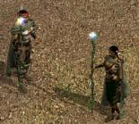 Друиды в бою (HoMM IV)