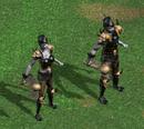 Воины смерти в бою (HoMM IV)