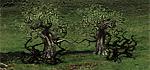 Улучш. арки дендроидов - ОплотH3