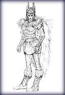 Валькирия герои 5 НМК
