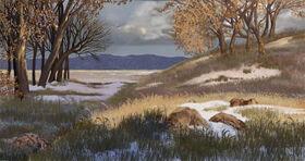 Ice age landscape