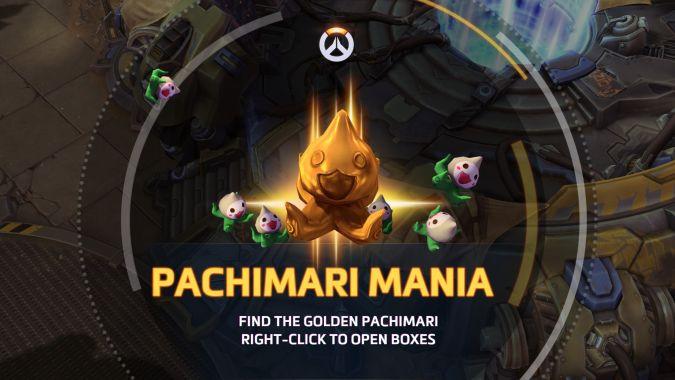 Heroes Of The Storm Pachimari