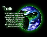Maturin the Turtle