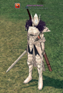 Chronicler (Paladin Dual Swords)