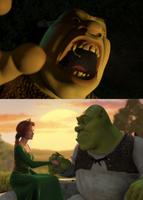 Shrek - two sides