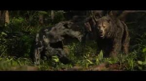 Bagheera Vs Baloo Fight Mowgli Legend of the Jungle