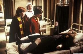 Harry and Ron thinks Hermoine is dead
