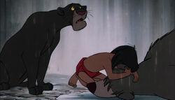 Bagheera comforting Mowgli