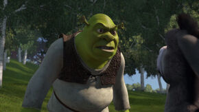 Shrek yelling at Donkey