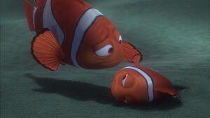 Marlin & Nemo reuniting