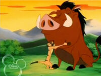 Timon-and-pumbaa-reconciling