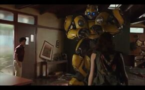 Bumblebee gets punished
