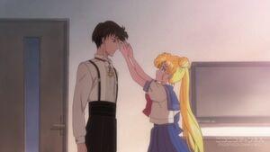 Mamoru and Usagi Crystal 7