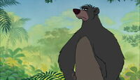 Baloo in a rage