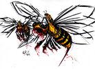 Bees rolfplus