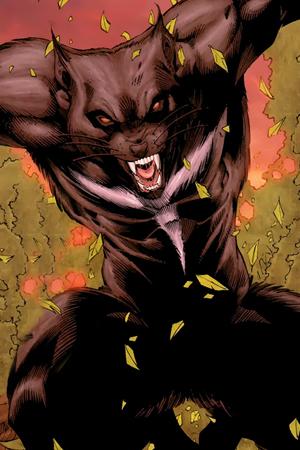 Tasmanian Devil2