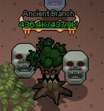 Kayo - Ancient Branch