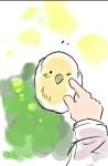 File:Prussia's BIRD.jpg