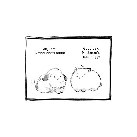 Netherland's rabbit talks with Pochi.