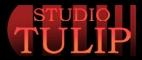 Studio Tulip