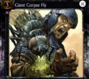 Giant Corpse Fly