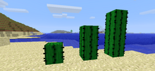 Minecraft-cacti