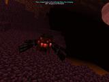 Heatscar Spider