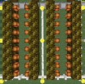 Tutorial - Manual Farms - Coconuts