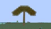 Miner Tree