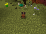 Forest Bunny