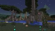 Twilight Forest - Twilight Mangrove
