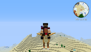 Chococraft - Gold Chocobo - Riding