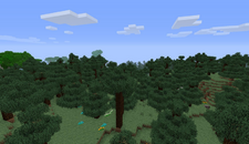Pine Forest Biome
